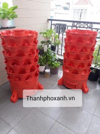 Mua Tháp rau hữu cơ Eco tại Khánh Hòa